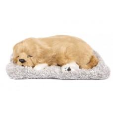 Игрушка спящая собака Ретривер с бамбуковым углем в салон автомобиля